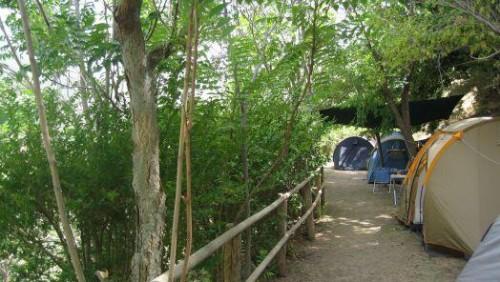 shady-camping
